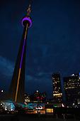 2015 APA: Toronto-MEMBERS EVENTS