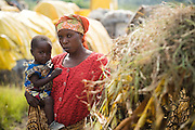 A woman holds her child at the CCLK (Centre Chrétien du Lac Kivu) spontaneous IDP site near Mugunga, on the outskirts of Goma, Eastern Democratic Republic of Congo on Wednesday December 17, 2008. The site, that sprung up seven months ago, shelters over 2,500 people who have fled conflict.
