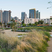 Hargreaves Associates, Schmidt Design Group, Davis Davis Architects, Waterfront Park, San Diego, California, County Administration Center, McCarthy Builder Companies