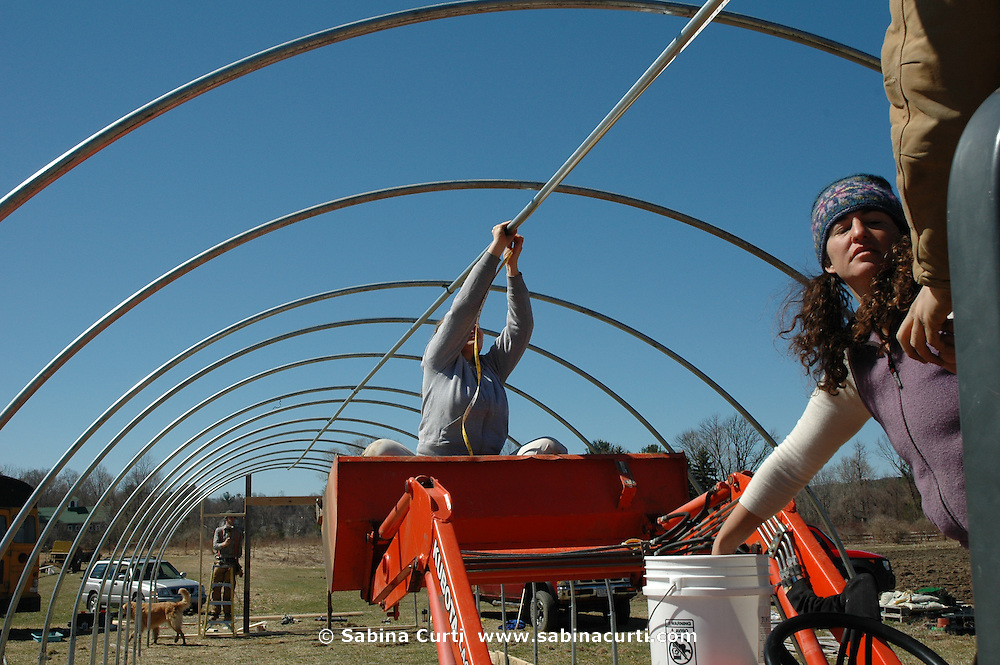 Farm Girl Farm CSA, sustainable community supported agriculture. Setting up the first greenhouse at Farm Girl Farm, North Egremont, MA 2006