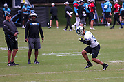 Carolina Panthers running back Elijah Holyfield(33) catches a tennis ball in a drill during minicamp at Bank of America Stadium, Thursday, June 13, 2019, in Charlotte, NC. (Brian Villanueva/Image of Sport)