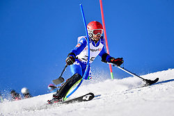 BENDOTTI Davide, LW2, ITA, Slalom at the WPAS_2019 Alpine Skiing World Cup, La Molina, Spain