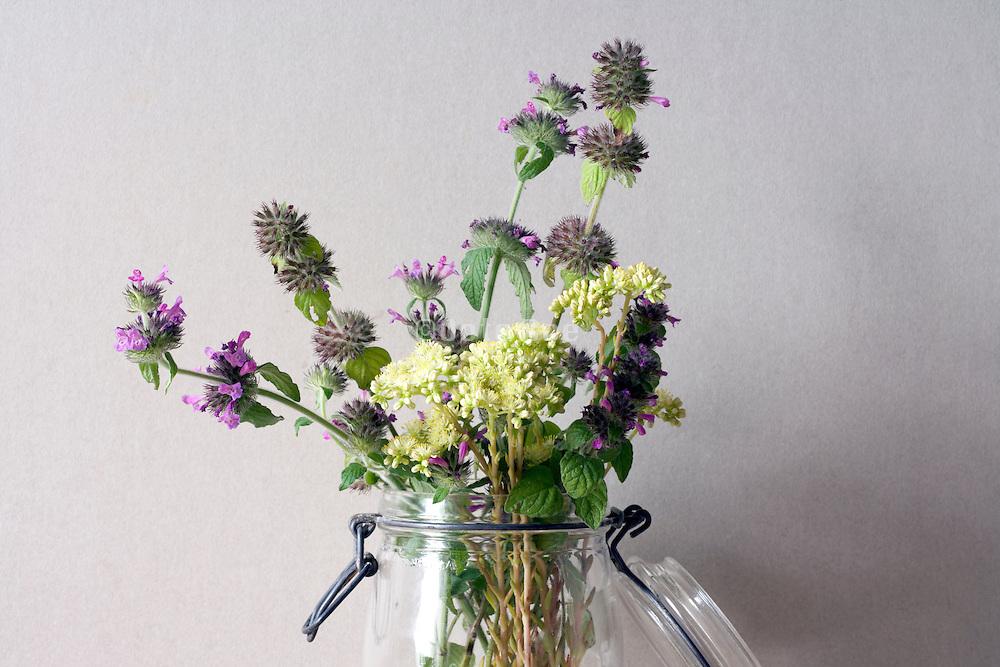 various wild flowers in glass jar