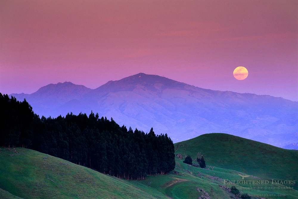 Full moon rising at sunset over Mt. Daiblo from the Orinda Hills, Contra Costa County, CALIFORNIA