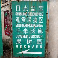 """GAOBEIDIAN, 7.NOV. 2014 : ein Hinweisschild am Eingang des """" Tausend Meter """" langen Korridors auf der farm des Rechten Weges."""
