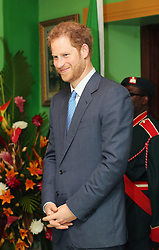 Prince Harry during a reception hosted by Governor-General of Saint Kitts and Nevis Sir Tapley Seaton at Government House, Basseterre, during the second leg of his Caribbean tour.