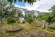 Epouvantail du jardin botanique du quartier de  la Bastide // Scarecrow of botanic garden of la Bastide district