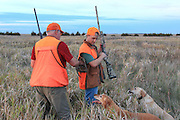 An older hunter helps a young hunter put a pheasant in his game bag as two Labrador retrievers watch.
