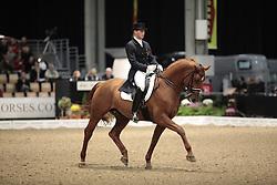 Heylen Tom (BEL) - Universal<br /> JBK Horse Show Odense 2009<br /> © Hippo Foto - Leanjo de Koster