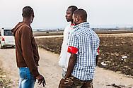 Boreano, Basilicata, Italia, 02/09/2013 <br /> Ragazzi africani a Boreano, dopo una giornata di lavoro nei campi di pomodoro <br /> <br /> Boreano, Basilicata, Italy, 02/09/2013 <br /> African guys in Boreano, after a working day on tomato lands