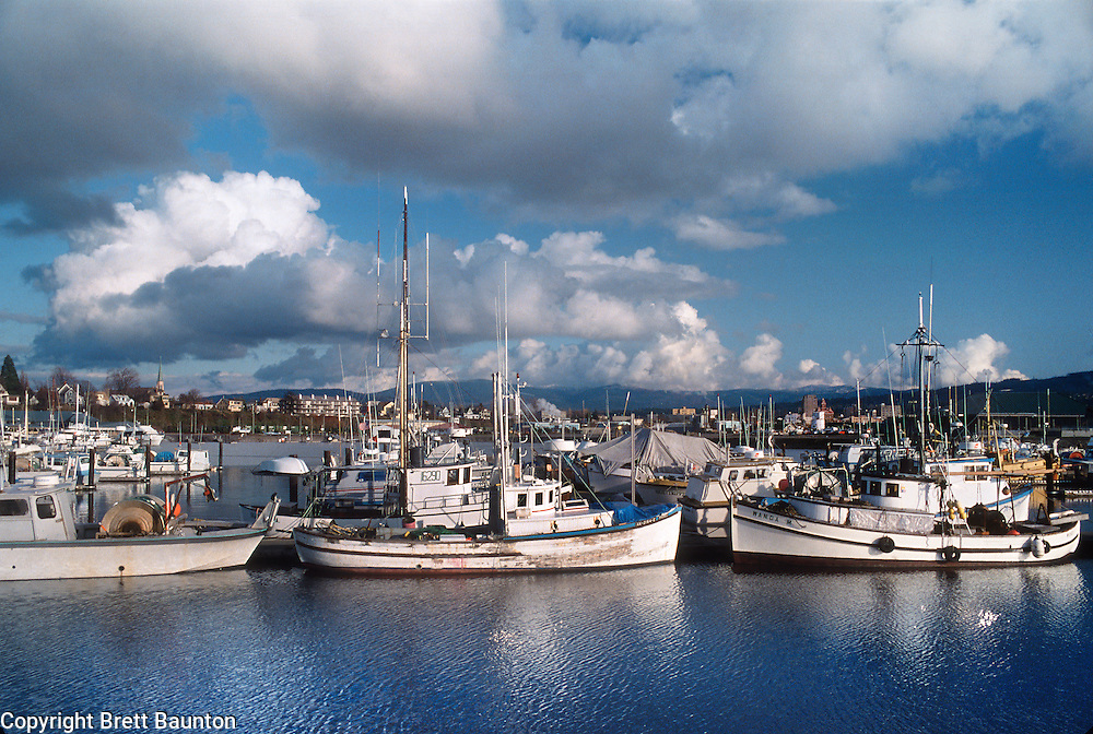Bellingham Boat Harbor, Washington State