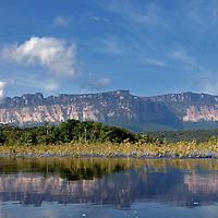 Vista del Auyantepui desde el rio Carrao. Edo. Bolivar. Venezuela. View of Auyantepui from Carrao river. Edo. Bolivar. Febrero 28, 2013. Jimmy Villalta.