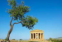 Italie, Sicile, Agrigente, Vallee des Temples, Temple de la Concorde // Italy, Sicily, Agrigento, Valley of the Temples, Valle dei Templi, Concordia Temple