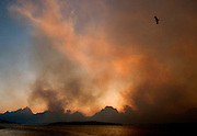 NEWS&GUIDE PHOTO / PRICE CHAMBERS.An eagle soars above Jackson Lake as smoke from the Bearpaw Bay Fire combines with a Teton sunset to create a spectacular scene on Saturday. The fire on the west shore of Jackson Lake has grown to over ten times its original size.