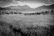 Pahsimeroi Valley, Idaho