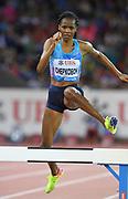 Beatrice Chepkoech (KEN) places second in the women's steeplechase in 8:59.84 during the Weltklasse Zurich in an IAAF Diamond League meeting at Letzigrund Stadium in Zurich, Switzerland on Thursday, August 24, 2017.   (Jiro Mochizuki/Image of Sport)