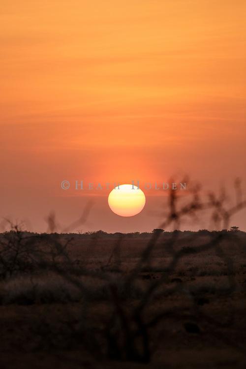 The vibrant African sun sets on the savannah's horizon.