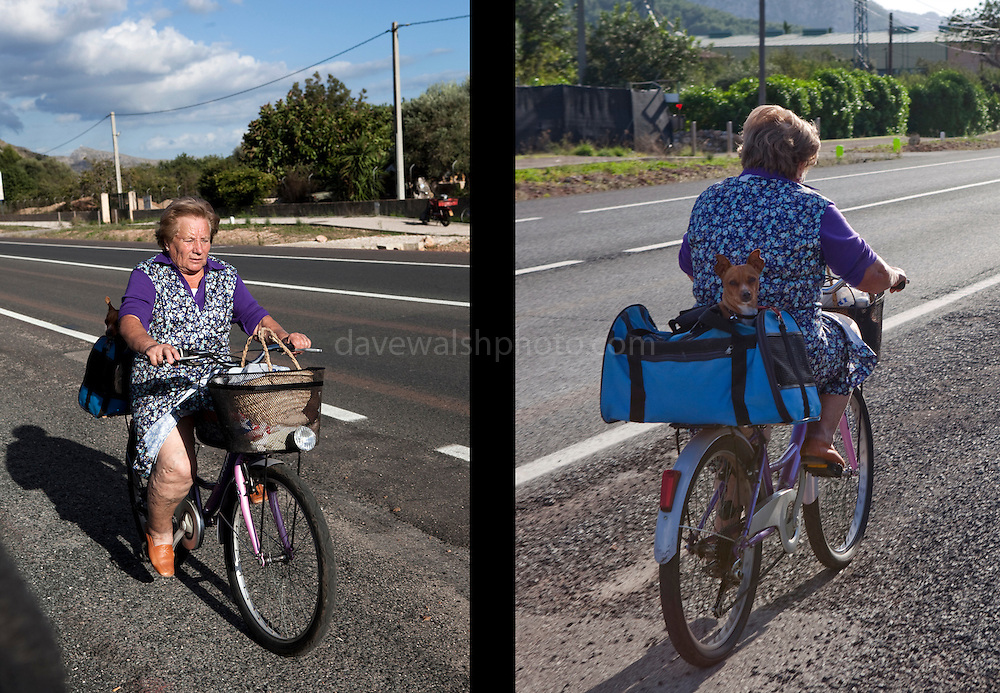 Woman on bicycle with her dog, near Pollenca, Mallorca. © Dave Walsh 2012. Editorial Use only.
