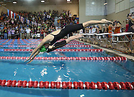 Iowa City West's Erica Hsu takes off for the first leg of the 400 yard freestyle relay event at the Girls' High School State Swimming & Diving Championships at the Marshalltown YMCA/YWCA in Marshalltown on Saturday, November 9, 2013. Iowa City West placed tenth in the event with a time of 3:39.62.