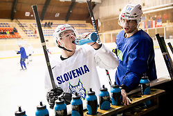 Ken Ograjensek, Miha Verlic during practice session of Slovenian Ice Hockey National Team at training camp, on February 8th, 2016 in Ledna dvorana, Bled, Slovenia. Photo by Vid Ponikvar / Sportida