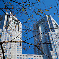 The Autumn leaves slowly fall away against the backdrop of the impressive Tokyo Metropolitan Government building in Shinjuku Ward, Tokyo.