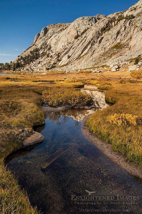 Stream through alpine meadow near Vogelsang Lake, Yosemite National Park, California