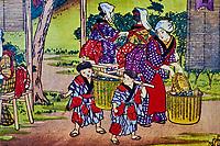 Japon, île de Honshu, région de Kansaï, Uji, boutique de thé  // Japan, Honshu island, Kansai region, Uji, tea shop