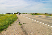 Highway 14, between Biggar and Saskatoon