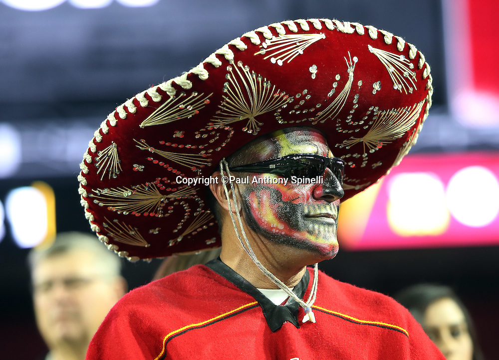 An Arizona Cardinals fan with a painted face and a sombrero looks on during the NFL NFC Divisional round playoff football game against the Green Bay Packers on Saturday, Jan. 16, 2016 in Glendale, Ariz. The Cardinals won the game in overtime 26-20. (©Paul Anthony Spinelli)