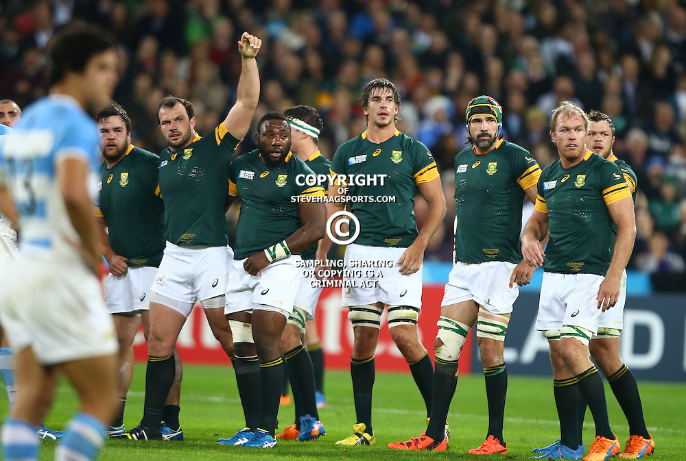 LONDON, ENGLAND - OCTOBER 30: General views during the Rugby World Cup 3rd Place Playoff match between South Africa and Argentina at Olympic Stadium on October 30, 2015 in London, England. (Photo by Steve Haag/Gallo Images)