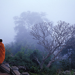A novice monk walks through the morning mist at a temple in Laos.