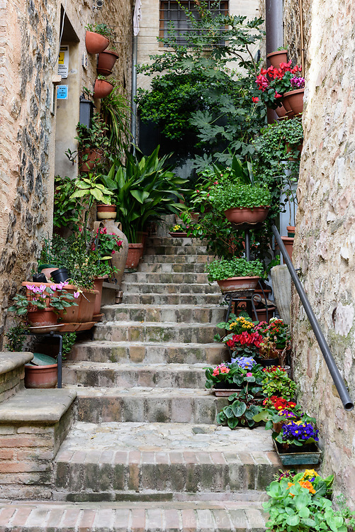 Umbrian Stairs