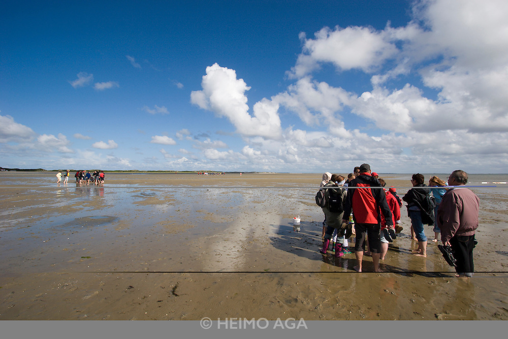 Guided excursion to the Wattenmeer with volunteers from Schutzstation Wattenmeer.