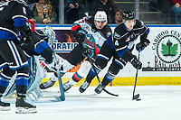 KELOWNA, BC - JANUARY 3:  Alex Swetlikoff #17 of the Kelowna Rockets stick checks Will Warm #4 of the Victoria Royals as he skates with the puck during third period at Prospera Place on January 3, 2020 in Kelowna, Canada. (Photo by Marissa Baecker/Shoot the Breeze)
