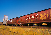 train and grain elevator<br /> Maple Creek<br /> Saskatchewan<br /> Canada