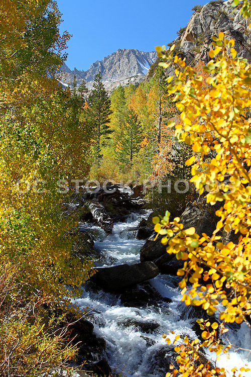 High Sierra Mountain Stream