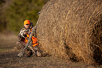DEER HUNTER WITH A MOSSBERG SHOTGUN AND WEARING BLAZE ORANGE AND REALTREE CAMOUFLAGE HIDING BEHIND HAY BALES AND GLASSING WITH BINOCULARS