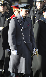 Prinz William beim Remembrance Sunday in London / 131116 *** Remembrance Sunday, London, 13 Nov 2016 ***