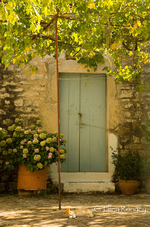 A stone house, old door and grape arbour in Kioni, Ithaca, The Ionian Islands, Greece