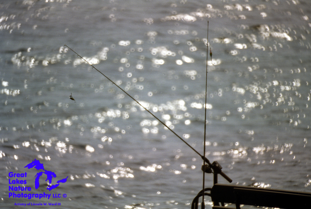I took this photo in 2005, from the porch of our cabin, on a day when it was simply too hot to fish (like 98 degrees). Oddly enough, this is the image that always comes into my head, to this day, whenever I would rather be fishing than doing whatever else it is that I'm doing at the moment.