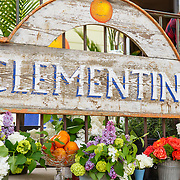 20150516 Clementine