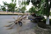 Sweeping Vehicle With Nine Brooms