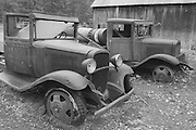Old Chevy Trucks, Barn, Peter Ranch, Taylorsville CA, Indian Valley, North Arm, California farming,