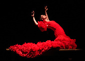 Flamenco 11th July 2019