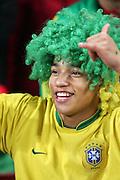 A male Brazil fan