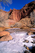 Red sandstone cliffs above the frozen Fremont River in Fruita, Waterpocket Fold, Capitol Reef National Park, Utah
