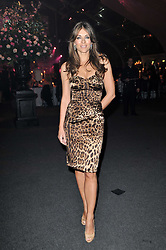 ELIZABETH HURLEY at the KIDS 40th Birthday Gala Dinner held in the Boiler House at Battersea Power Station, London on 10th March 2011.