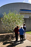 Visitors look at 'Wish Tree for Washington D.C' by Yoko Ono at The Hirshhorn Museum and Sculpture Garden, USA
