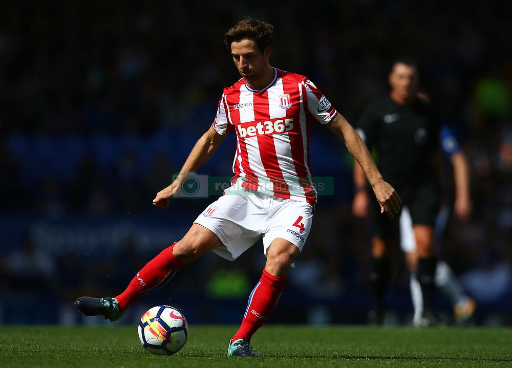 Stoke City's Joe Allen