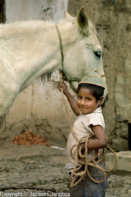 Mestizo boy holding horse at farm in Ayata, village in the Andes in Bolivia.